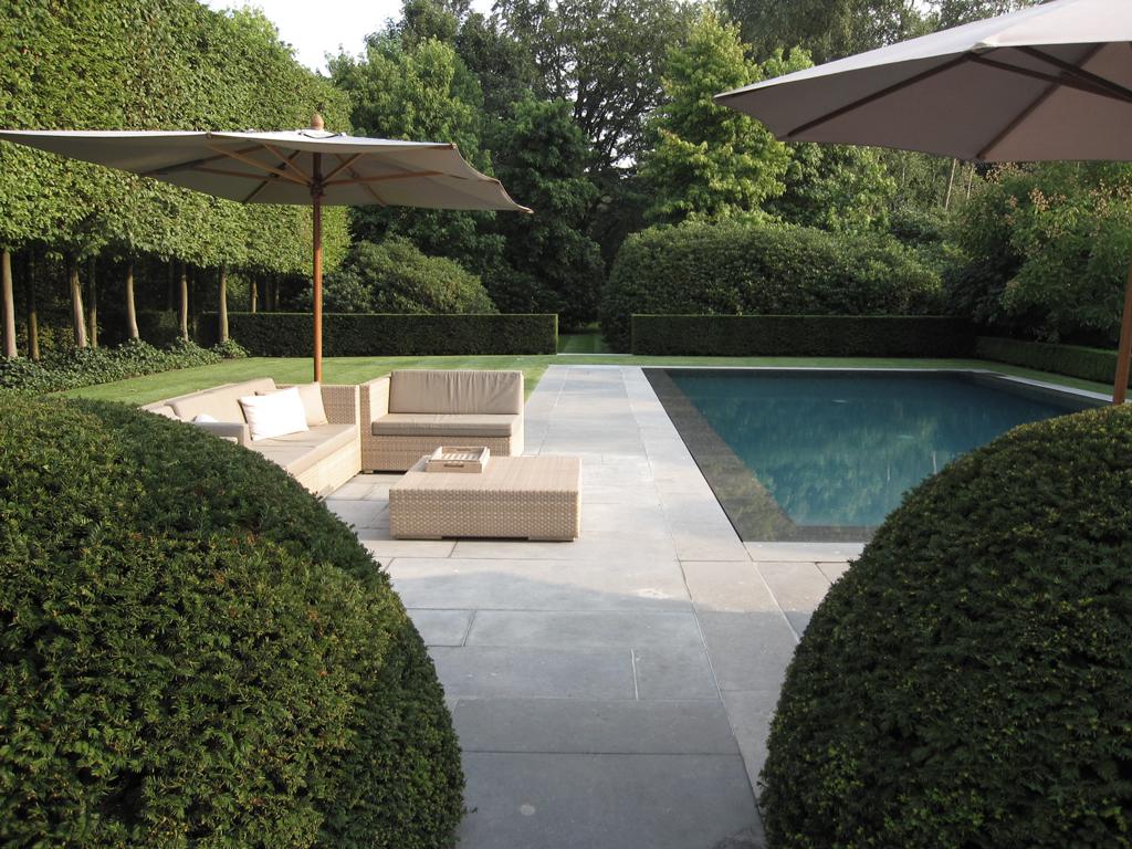 Hedendaagse tuin  ontwerp rond prachtig zwembad   Avantgarden