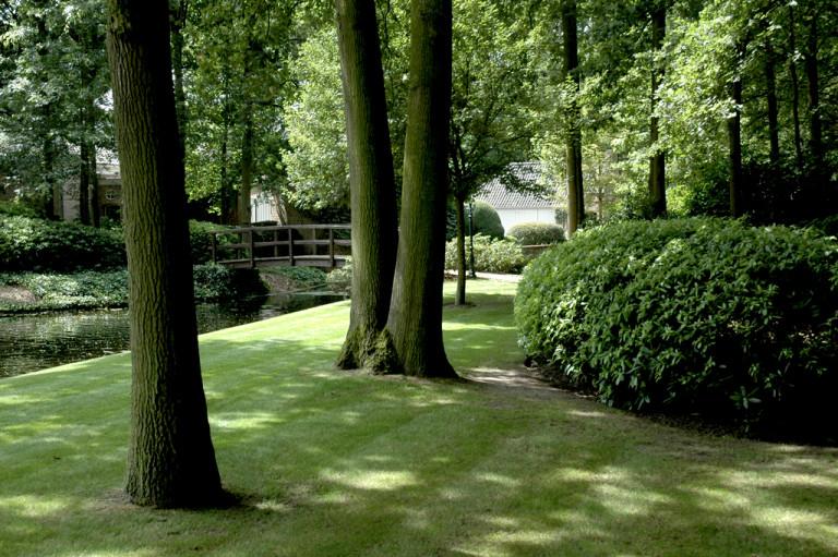 Avantgarden-Kasteeltuinen-en-domeinen-Beheerste-harmonie-rond-bosrijke-tuin-08