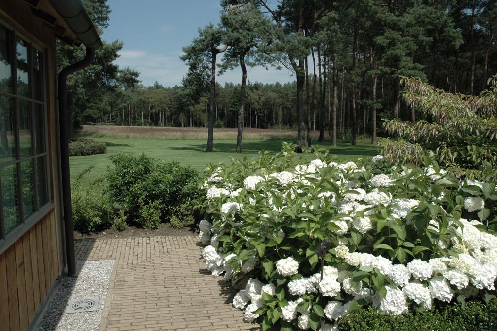 landelijke tuin heidelandschap