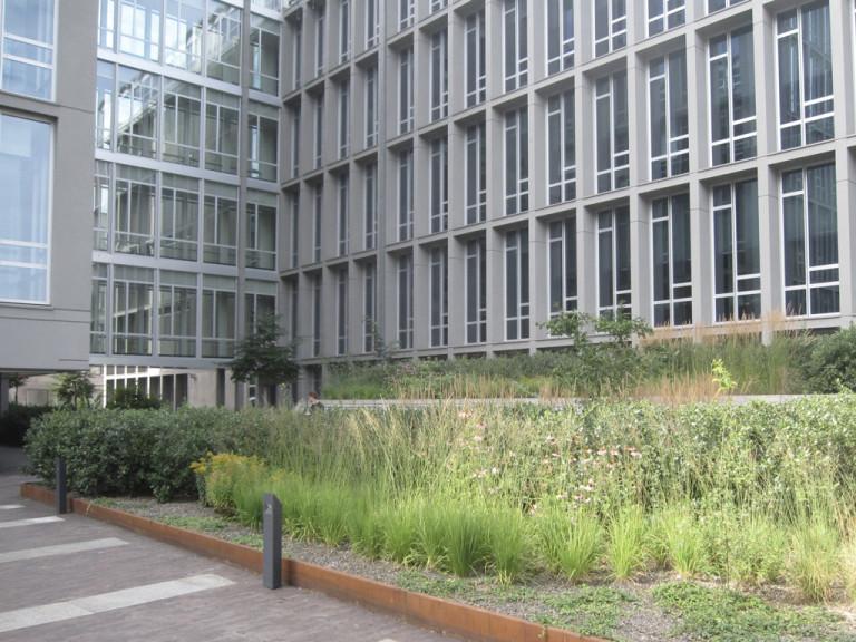 Avantgarden-Bedrijfs-en-kantoortuinen-Groene-long-in-hartje-Brussel-06