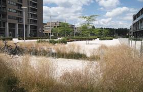 Avantgarden-Parken-en-pleinen-Haven-en-natuur-verbinden-07-small