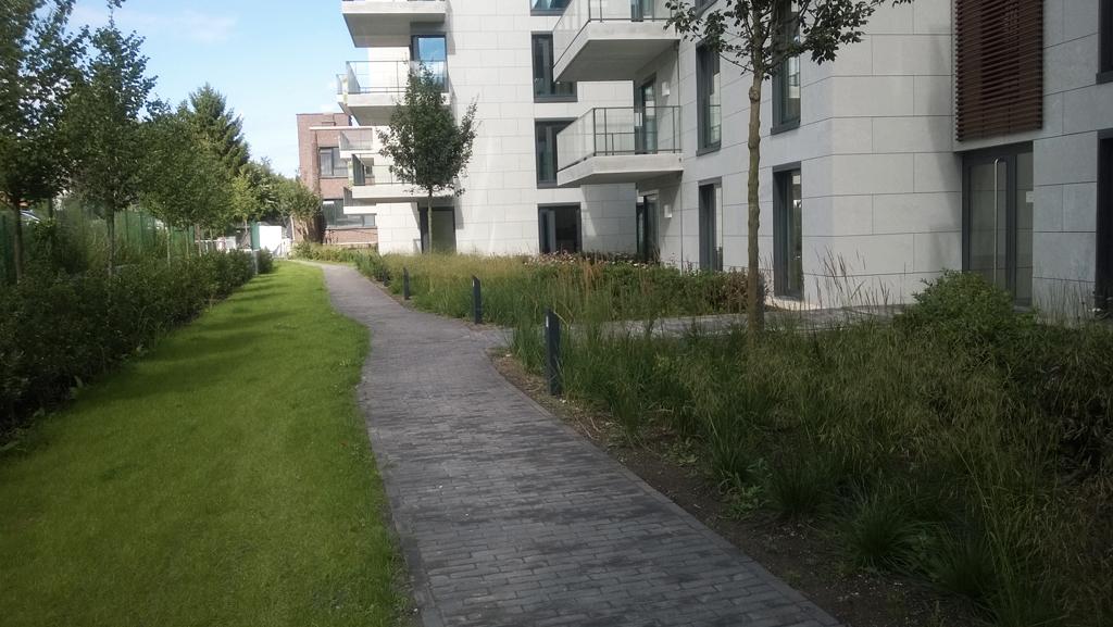 Avantgarden-Residentieel-Woonpark-sluit-naadloos-aan-op-natuurgebied-07