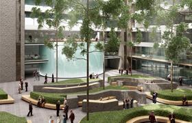 Avantgarden-Interieuraanplantingen-Binnenplein-met-hoge-bomen-03-small