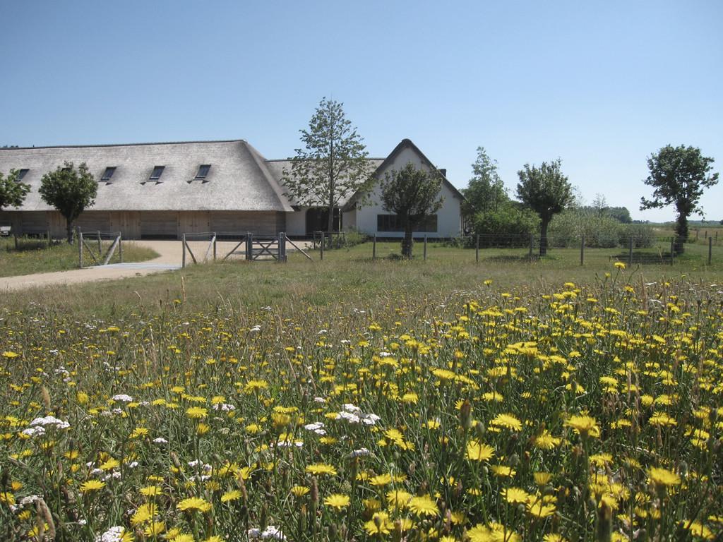 landelijke tuin zwinduinen