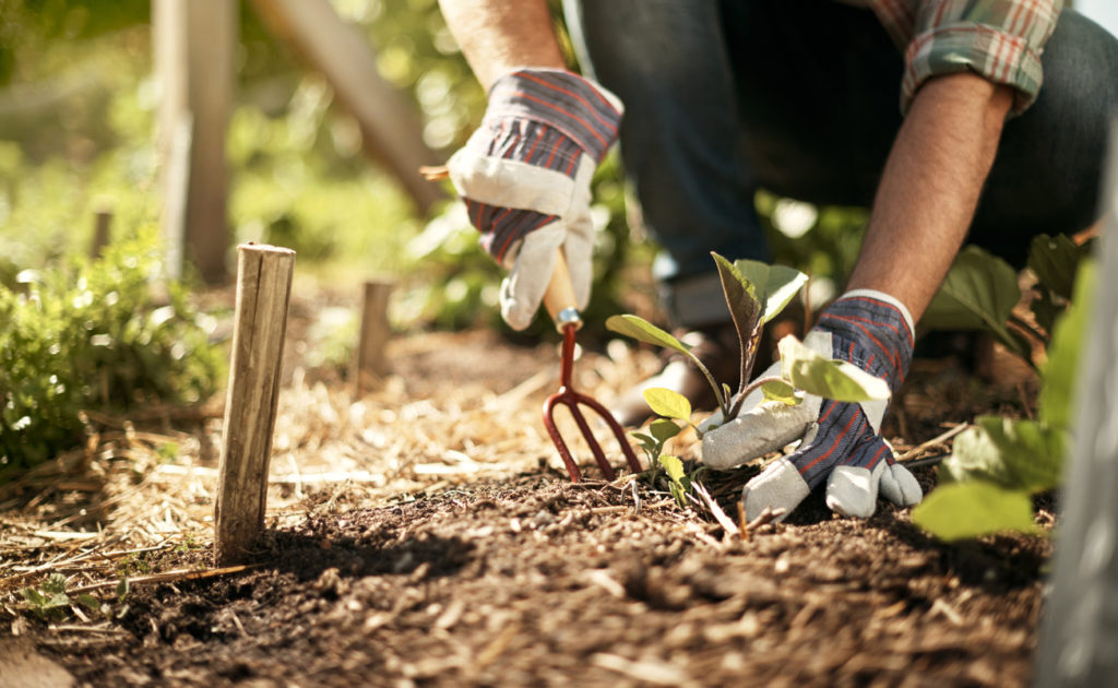 tuinman werkt in de aarde