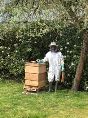 Imker met bijenkast