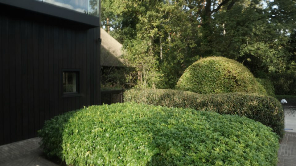 beplanting villatuinen Noord-Antwerpen
