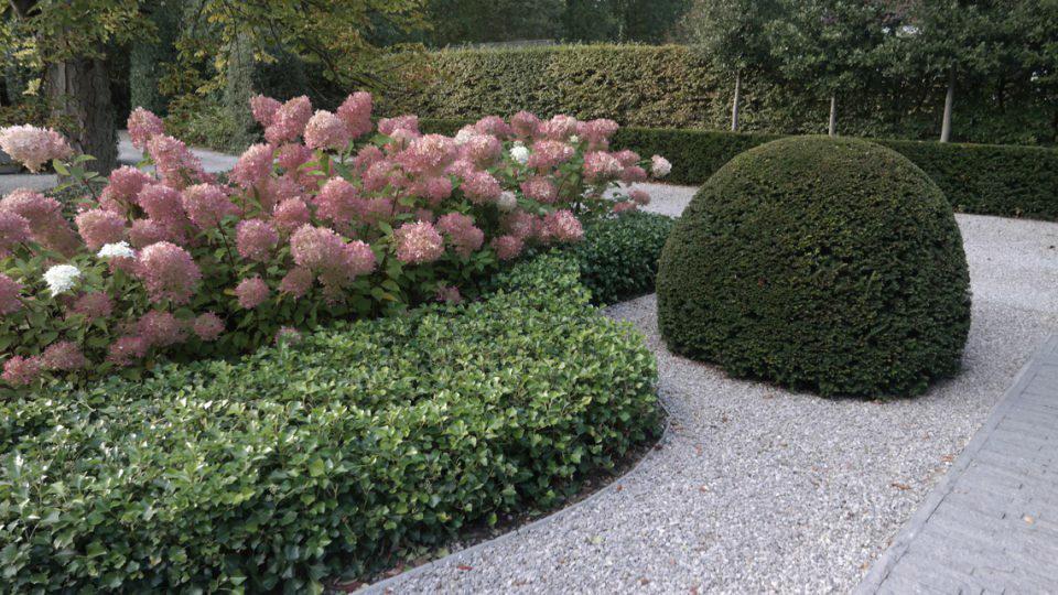 beplanting in villatuin Noord-Antwerpen