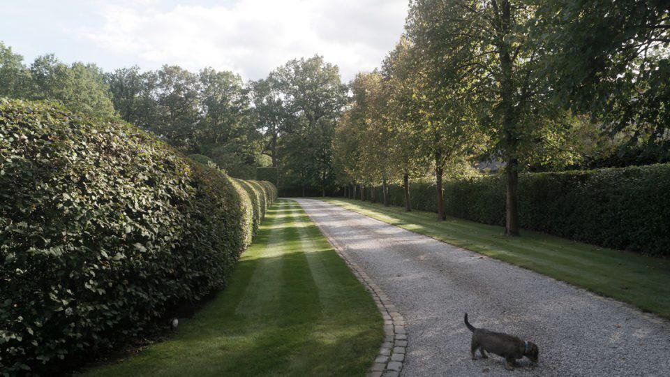 Villatuin in Noord-Antwerpen